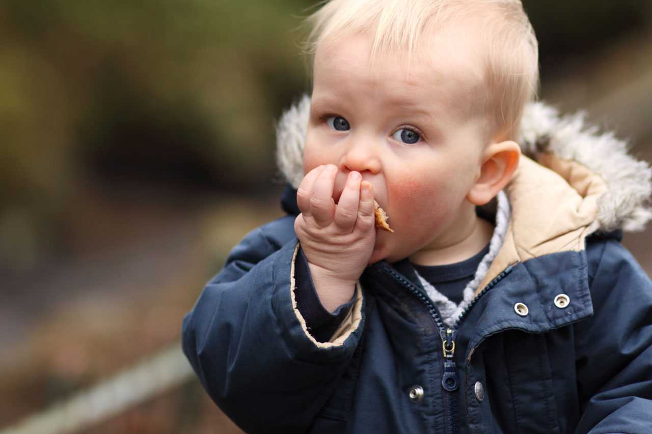 baby led weaning first finger foods