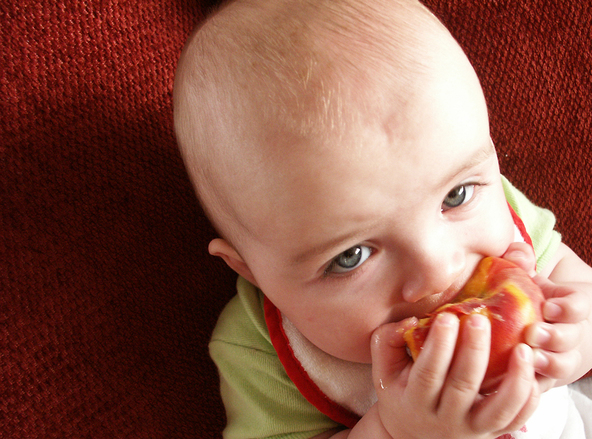 baby weaning finger foods