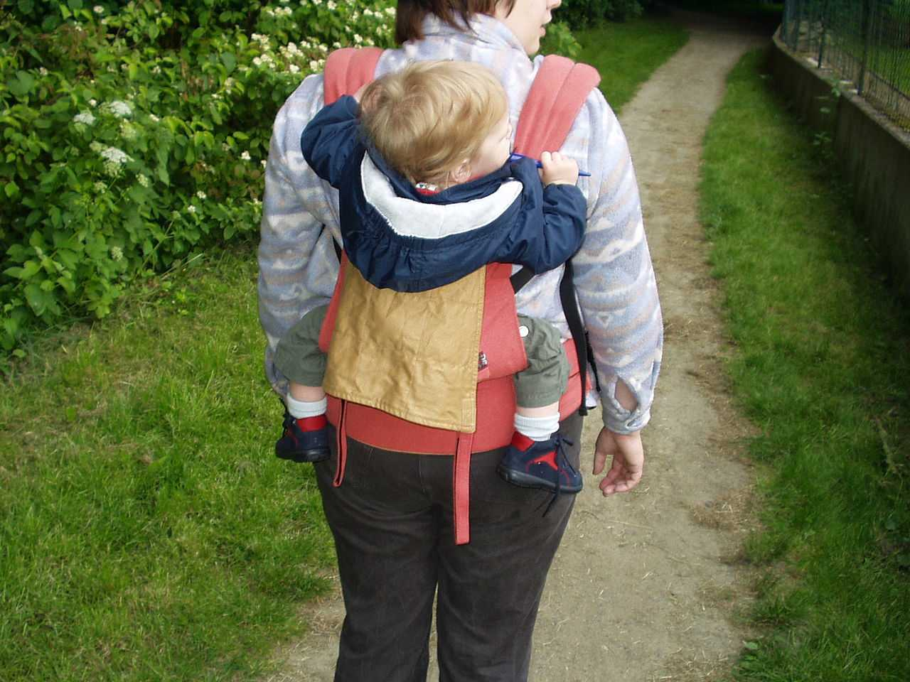 which baby carrier to buy